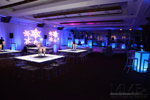 Winter Wonderland sweet 16 event design production