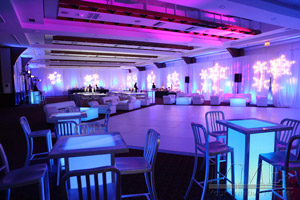 Winter Wonderland Sweet 16 Event Design